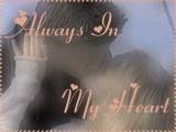 alwaysinourhearts.jpg